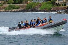 KAUAI_HAWAI_life em Kauai Fotografia de Stock
