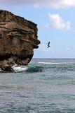 KAUAI_HAWAI_life en Kauai Foto de archivo