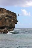 KAUAI_HAWAI_life på Kauai Royaltyfri Bild