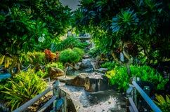 Kauai hawaianska öar Royaltyfri Bild