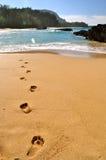 Kauai Hawaii Arkivbild