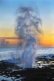 Kauai, Hawaii - el claxon que echa en chorro. Imagen de archivo libre de regalías