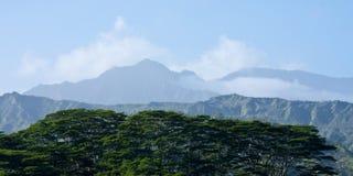 Kauai Landscape Stock Images