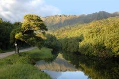 kauai reflexion arkivfoton