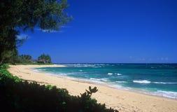 Kauai shoreline Royalty Free Stock Image