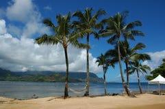 Kauai View 2. Beach, palm trees, mountains and ocean of Kauai, Hawaii (USA Stock Photography