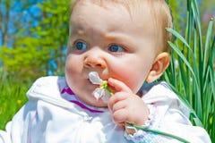 Kauen auf Blume lizenzfreie stockfotografie