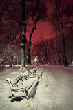 Kaufen Sie im Schnee in einem Park in der Winternacht Stockfotos