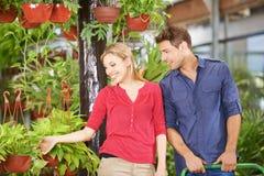 Kaufende Anlagen des Mannes und der Frau in Garten-Center lizenzfreie stockbilder