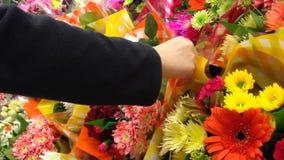 Kaufende Blume stock video
