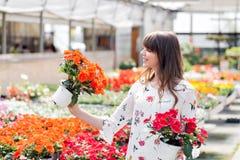 Kaufende Blumen der jungen Frau in einem Garten-Center Lizenzfreie Stockfotos