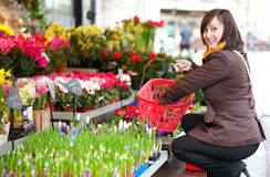 Kaufende Blumen des schönen Mädchens Stockbild