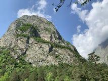 Kaukasisch berglandschap Tseykloof Weergeven van onderstelmonnik in de zomer Republiek van Noord-Ossetië - Alania stock afbeelding