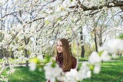 Kaukasisch meisje met lang bruin haar in de bloeiende tuin Witte kersenbloemen Stock Foto's