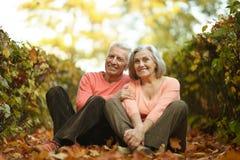 Kaukasische ältere Paare Stockbild