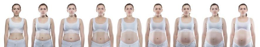 Kaukasische Frau während der Schwangerschaft mit dem bloßen Bauch Stockfoto