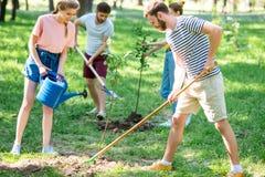 kaukasische Freunde, die neue Bäume pflanzen und wässern stockfotos