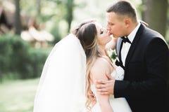 Kaukasische gl?ckliche romantische junge Paare, die ihre Heirat feiern outdoor lizenzfreie stockfotos