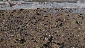 Kaukasische mens die naakte voet op zandig strand lopen in overzeese golf stock footage