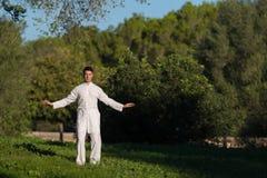 Kaukasische mens die Tai Chi in het park doen Royalty-vrije Stock Afbeeldingen