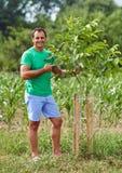 Kaukasischer Landwirt durch einen jungen Walnussbaum stockfoto