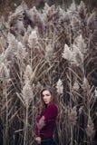 Kaukasisches blondes junges Schönheitsmädchen mit dem langen Haar Lizenzfreie Stockbilder