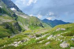Kaukaska biosfery rezerwa, dolina rzeczny Imeretinka w lecie w jasnej pogodzie Obrazy Royalty Free