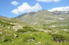 Kaukaska biosfery rezerwa, dolina rzeczny Imeretinka w lecie w jasnej pogodzie Obraz Stock