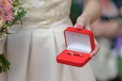 Kaukaska kobieta, trzyma biżuterii pudełko z dopasowywanie platyny lub srebra obrączkami ślubnymi zdjęcie royalty free