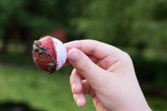 Kaukaska ręka trzyma brudną połów bobinę Obraz Stock