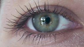 Kaukaski Żeński oko zamknięty ekstremum zbiory