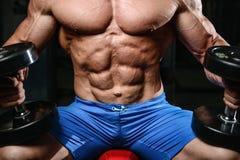 Kaukaski seksowny sprawności fizycznej samiec model wykonuje ćwiczenie z dumbbell Zdjęcie Stock