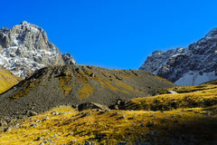 Kaukasus, Dorf Juta grüner Hügel, blauer Himmel und schneebedeckte Spitze Chaukhebi im Sommer Lizenzfreie Stockbilder