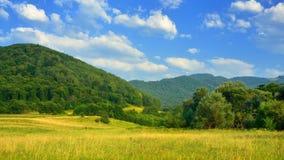 Kaukasus skog Royaltyfria Bilder