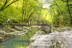 kaukasus Sochi Fluss Agura Lizenzfreies Stockfoto