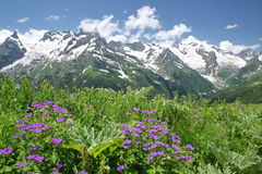 Kaukaz góry Obrazy Royalty Free