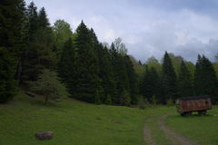 Kaukaz rezerwa Zdjęcie Stock