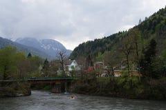 Kaukaz rezerwa Fotografia Royalty Free