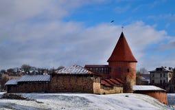 Kaunas Castle Royalty Free Stock Photography
