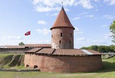 Kaunas stadsslott Arkivfoto
