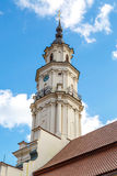 Kaunas Town Hall Royalty Free Stock Photography