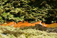 Kauw beek met oranje water van ijzerstortingen royalty-vrije stock fotografie