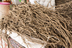 Kava Root. Freshly harvested and dried Kava root in a Fijian farmers' market Royalty Free Stock Photos