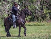 Kavallerie kundschaften lizenzfreie stockfotos