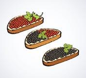kaviar bakgrund som tecknar den blom- gräsvektorn royaltyfri fotografi