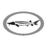 Kaviar-Konzept-Designe Stockfotografie
