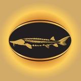Kaviar-Konzept-Designe Lizenzfreie Stockfotos