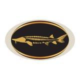 Kaviar-Konzept-Designe Stockfoto
