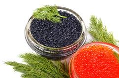 Kaviar med dill royaltyfria foton