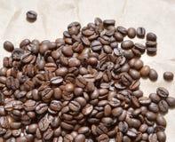 Kaw adra Zdjęcia Stock